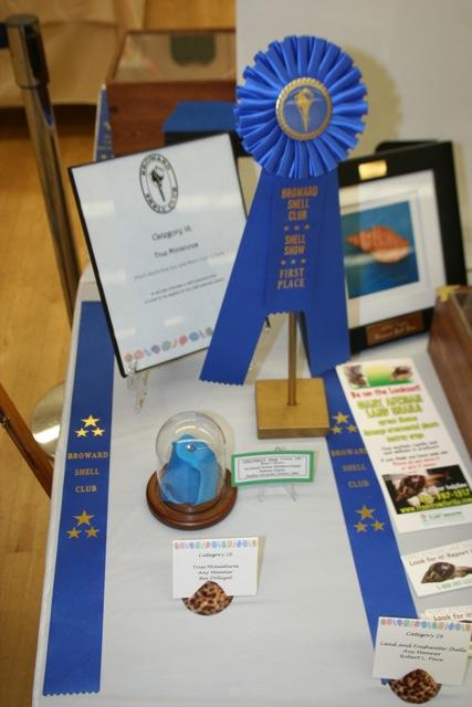 2012 shell show awards and winners broward shell club